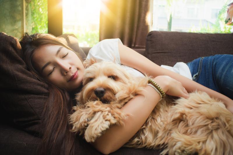 Shutterstock.com/MT.PHOTOSTOCK