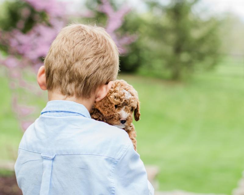 Shutterstock.com/Amanda R Fisher